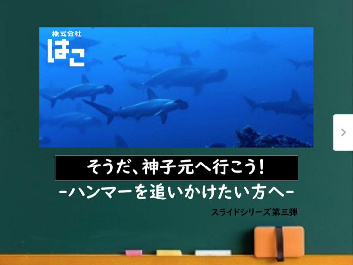 初めて神子元島に潜りに来る方必見!