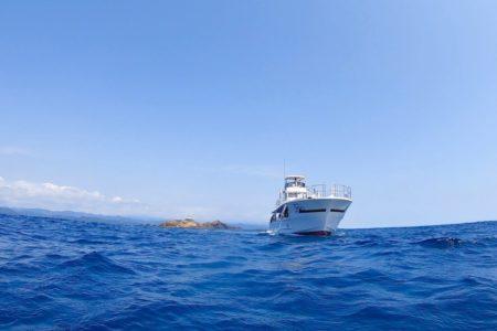 2020.09.02の神子元島 欠航のお知らせ。
