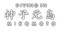 Diving in 神子元島 〜Powered by 海遊社〜